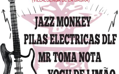 Concierto de música – Grupos Locales