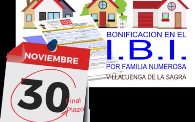 Bonificaciones en IBI para familias numerosas